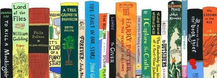 a dozen books on a shelf cartoon